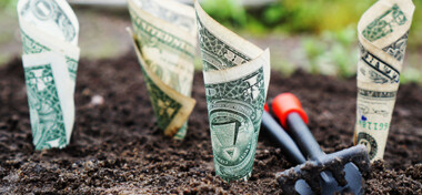 U s dollar bills pin down on the ground 164474