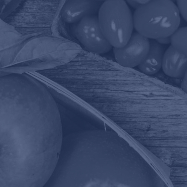 2014 Food And Beverage Whitepaper Featured Updated